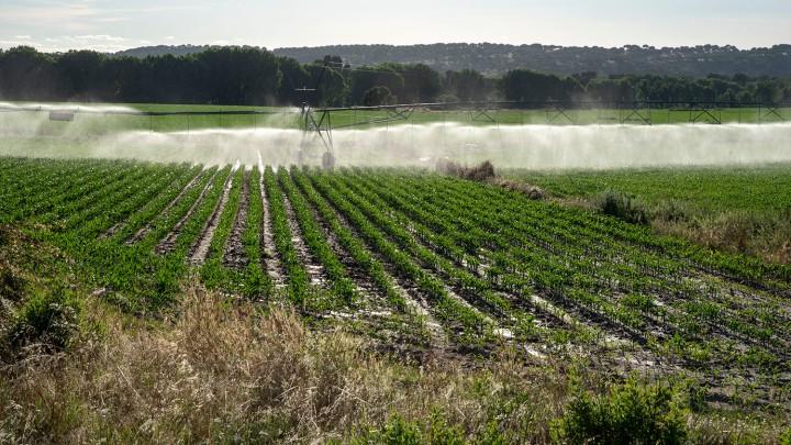 Área envolvente com actividade agrícola