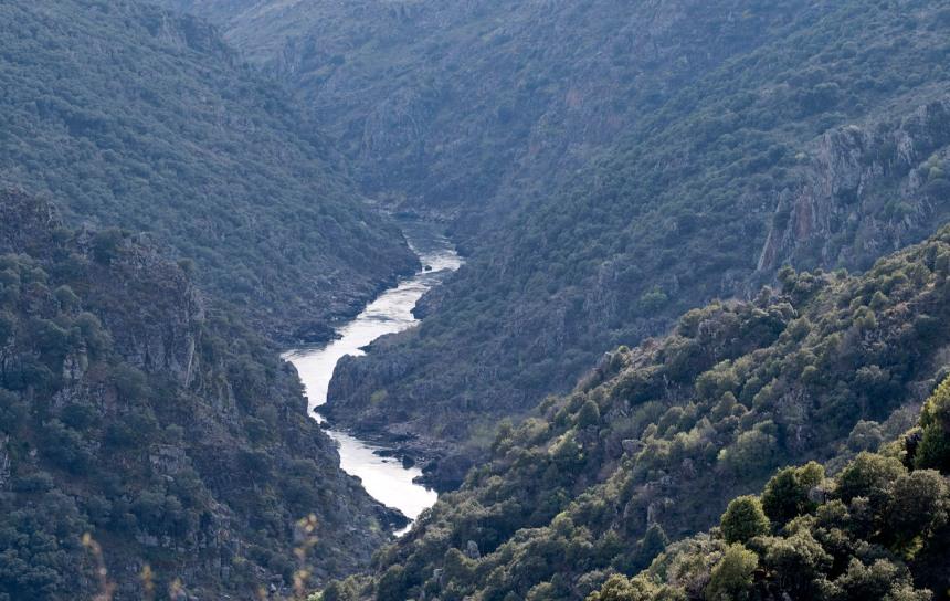 """O Douro """"domesticado"""" após a passagem da barragem do Crato"""