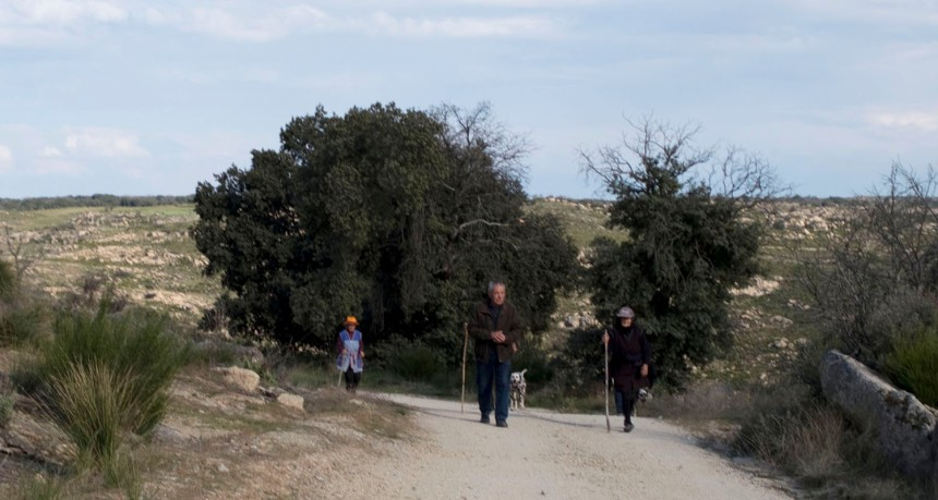 Caminho do miradouro para Aldeia Nova ou ou Aldinuoba