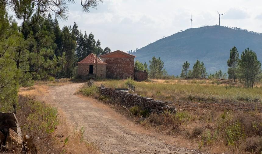 site_brejo_DSCF6811
