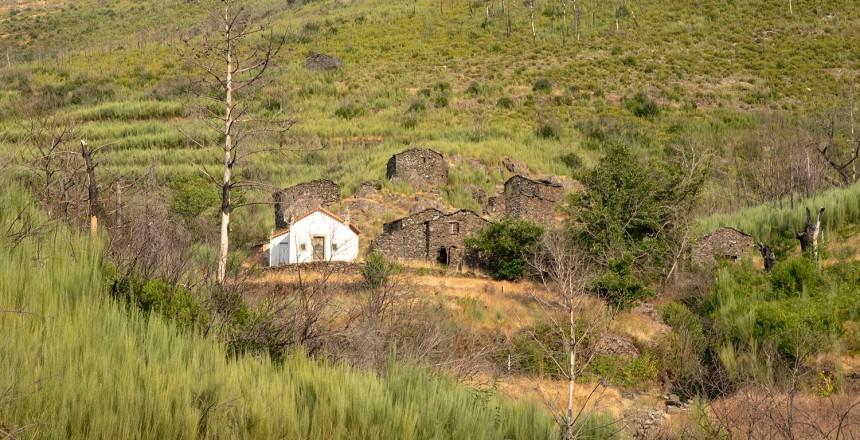 site_colcurinho_aldeia_1618